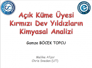 gamze_bocek_topcu
